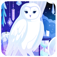 Witches Owl